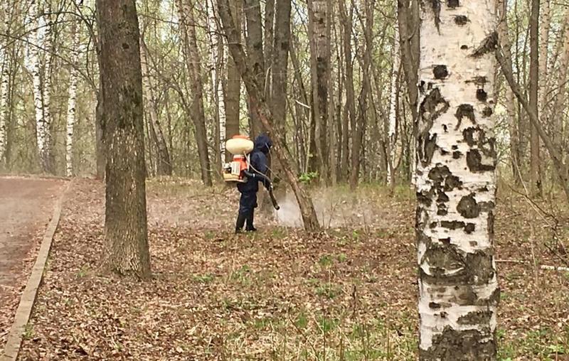Противоклещевая обработка территории парка «Швейцария» вНижнем Новгороде пройдет 24апреля