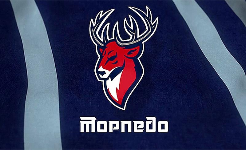 Нижегородское «Торпедо» в заключительном матче постоянной части сезона сыграло сподмосковным «Витязем»